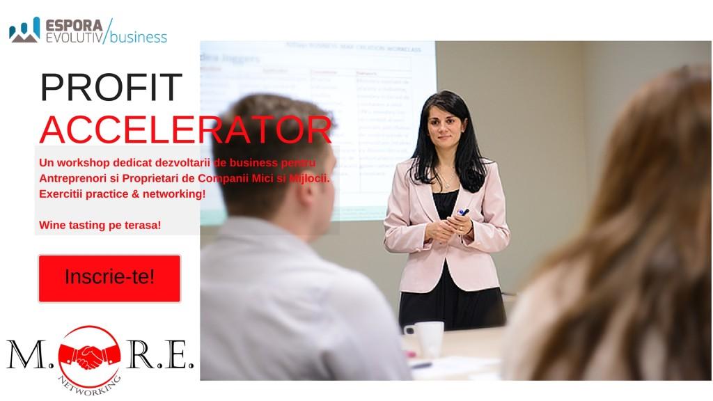 Profit Accelerator Workshop more networking